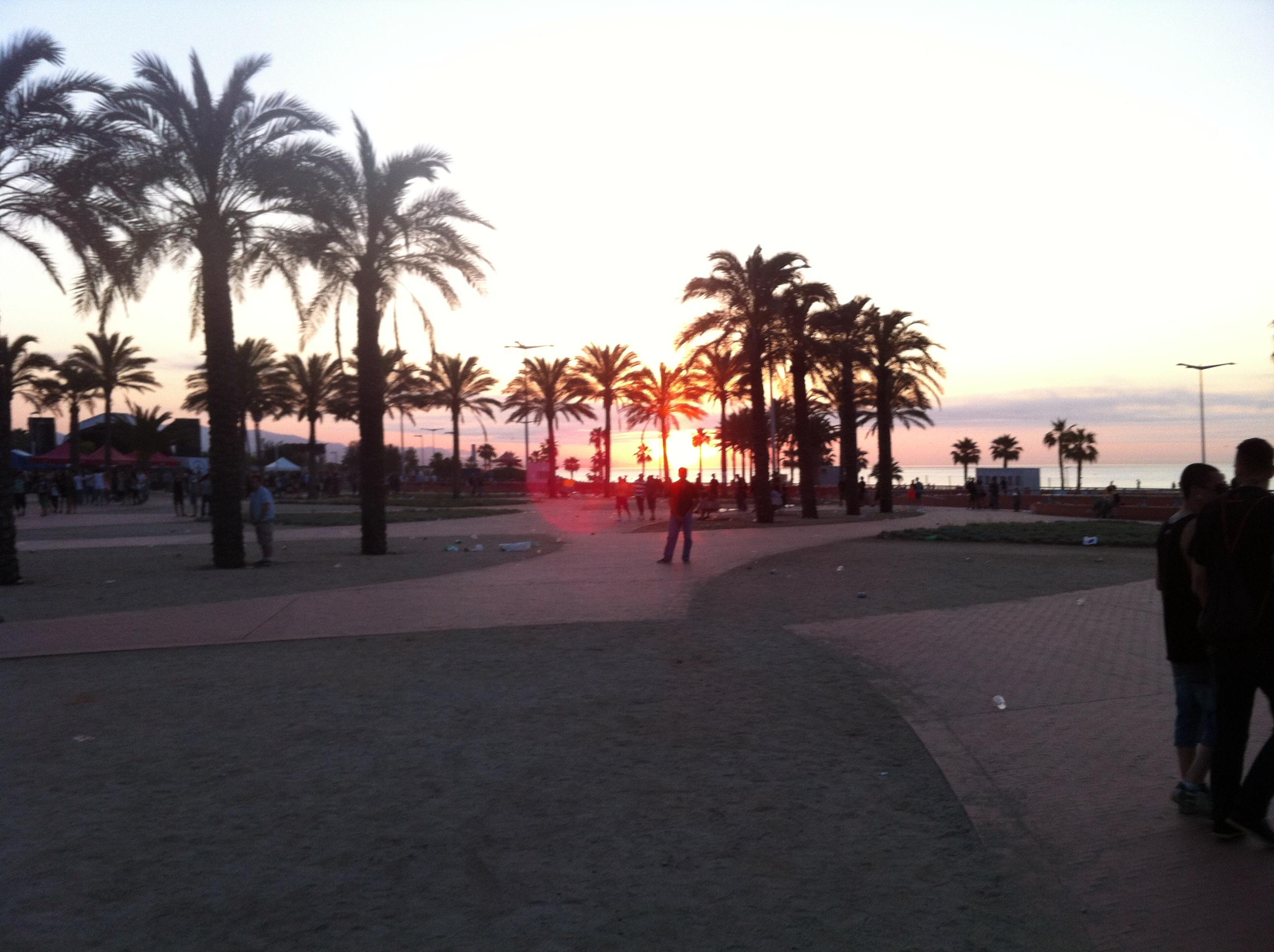 Sunrise after Sonar